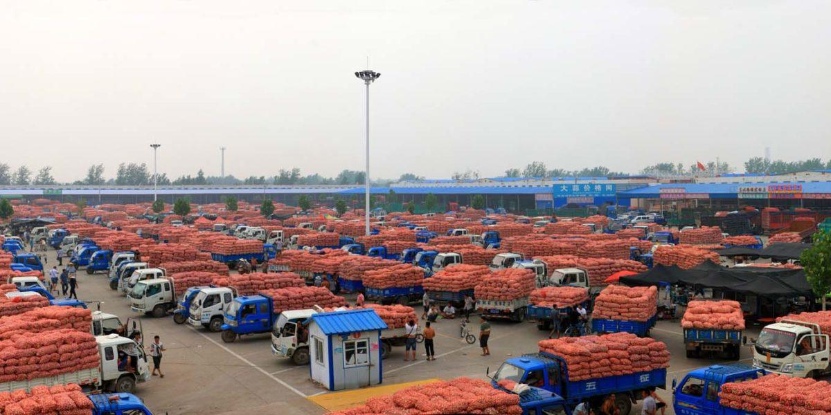 Рынок чеснока в Китае